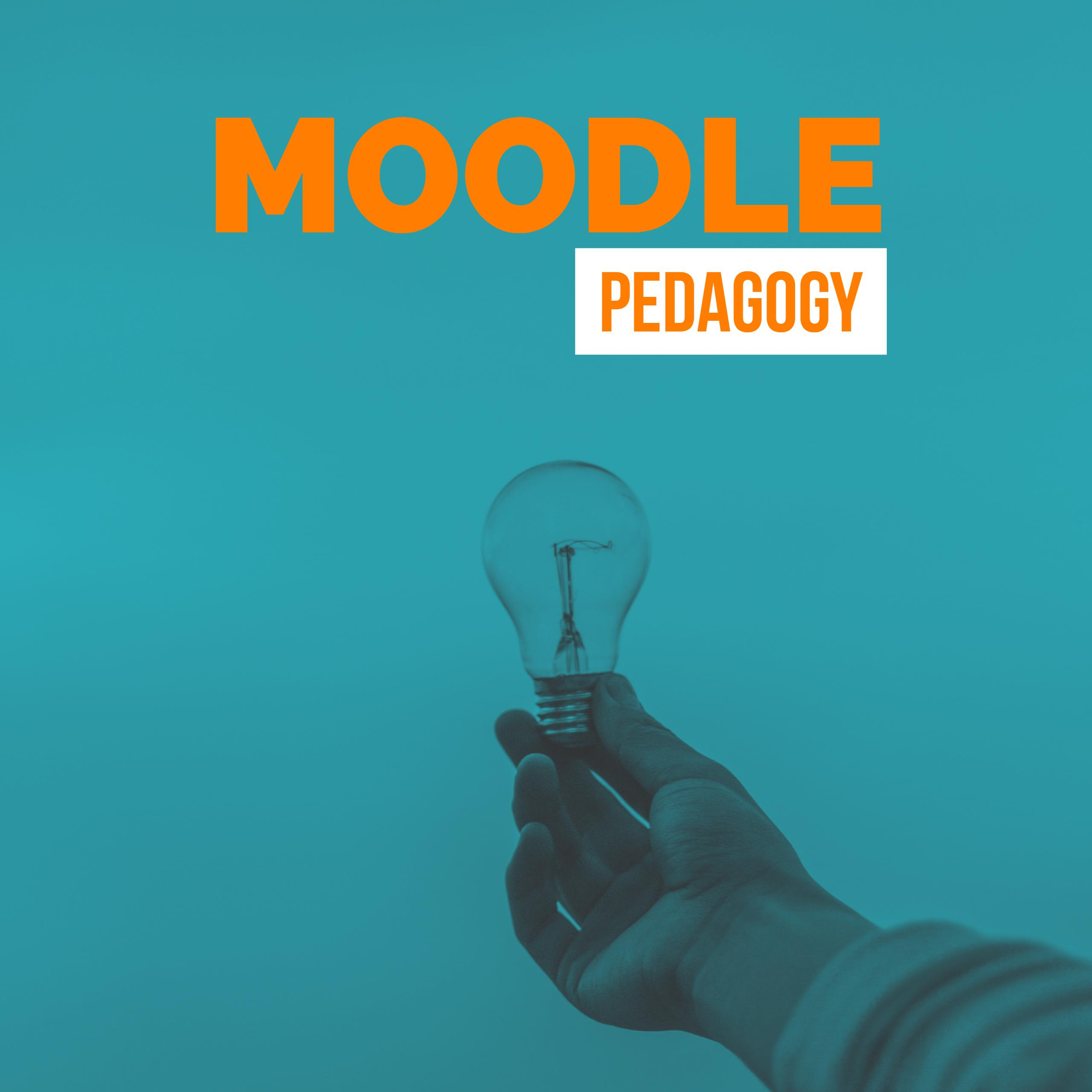 The Importance of Sound Pedagogy while Using Moodle: A case of one college